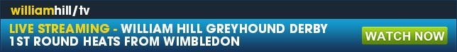 Live greyhound streaming and the authentic shop experience online