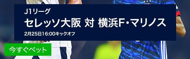 セレッソ大阪 対 横浜F・マリノス