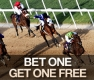 Free Dubai World Cup bet